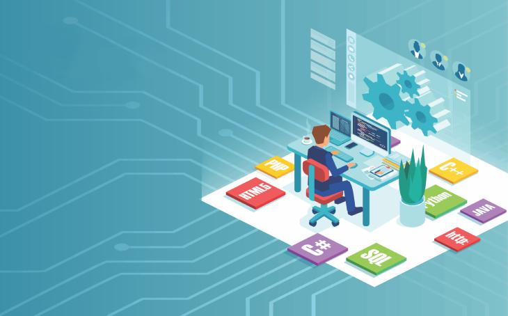 Softwareentwicklung mit Microsoft .net Technologie